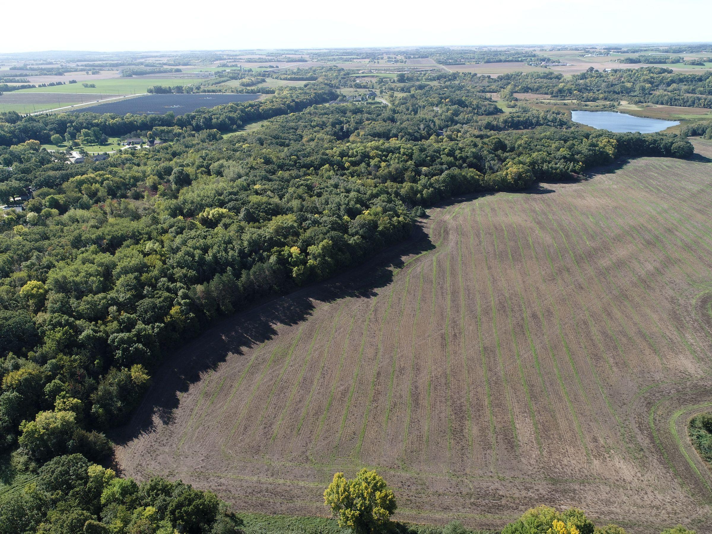 land-stearns-county-minnesota-298-acres-listing-number-15712-1-2021-09-23-123545.JPG