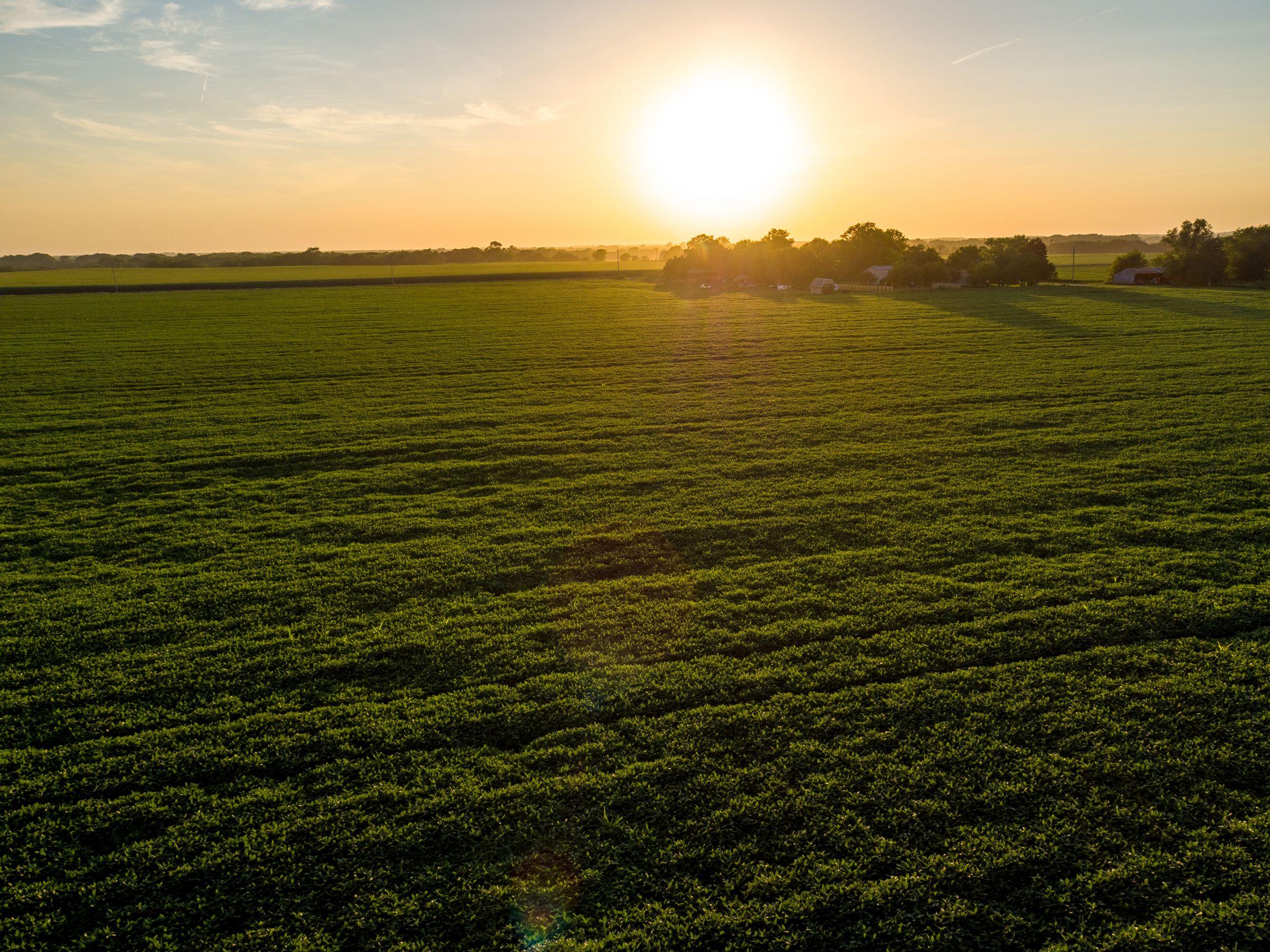 auctions-land-cass-county-nebraska-107-acres-listing-number-15713-0-2021-09-01-190823.jpeg