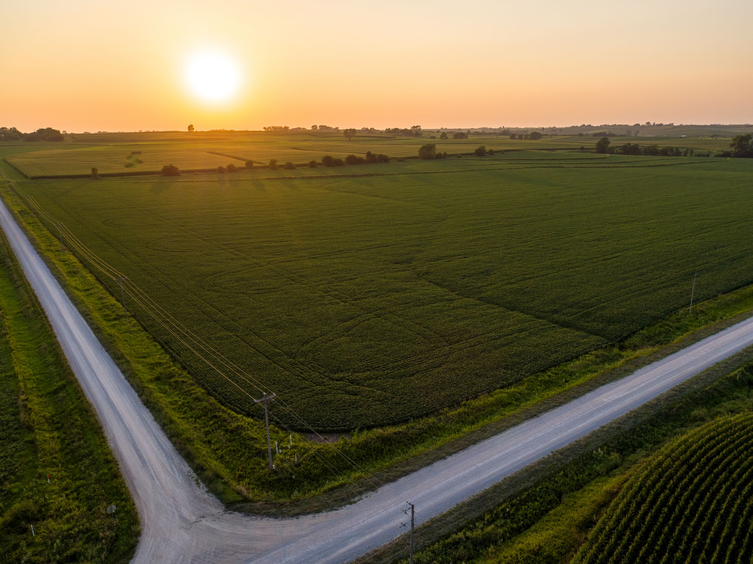 auctions-land-montgomery-county-iowa-703-acres-listing-number-15724-0-2021-09-07-151053.jpeg