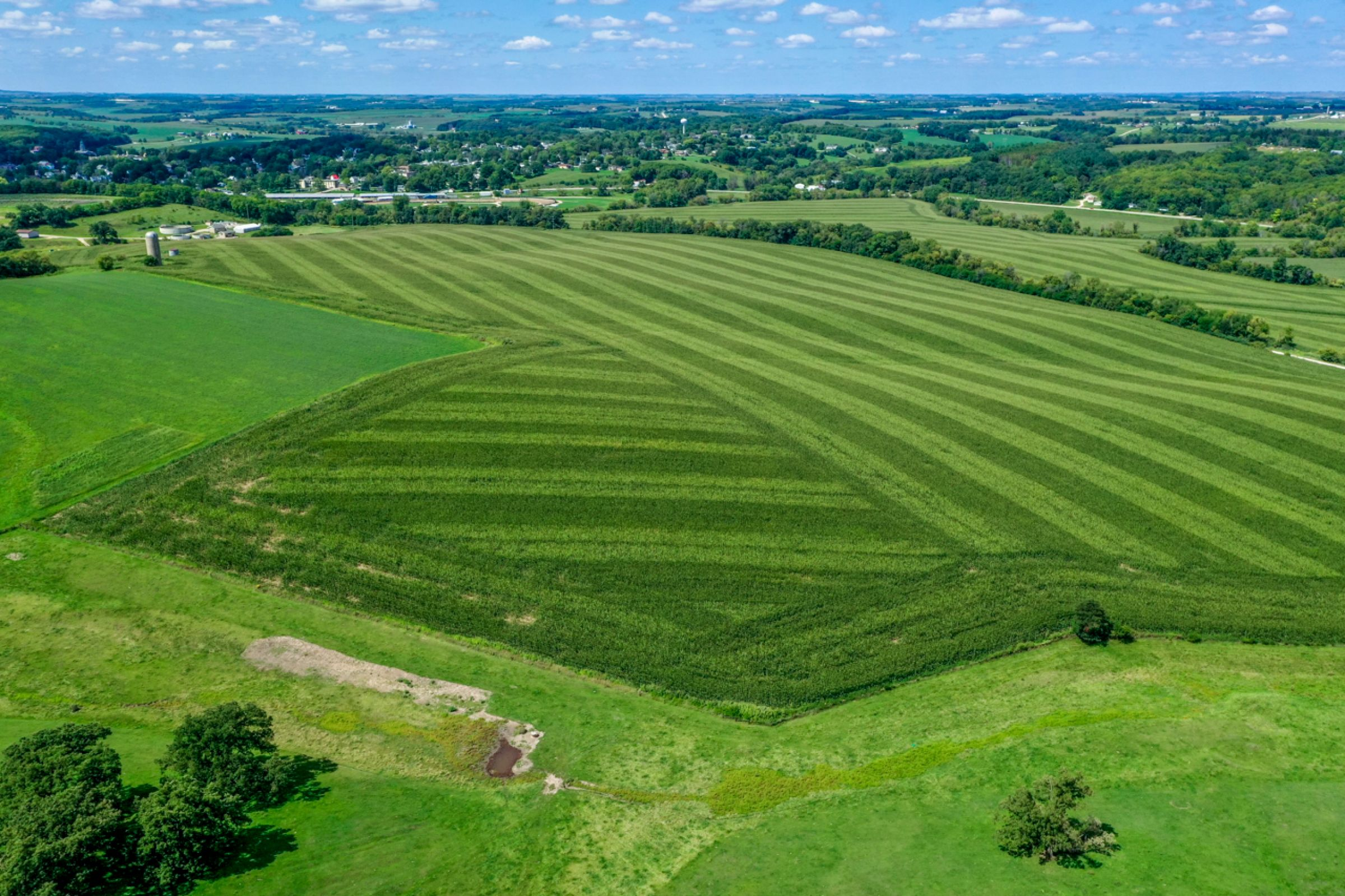 land-lafayette-county-wisconsin-120-acres-listing-number-15729-13-2021-09-03-204845.jpg