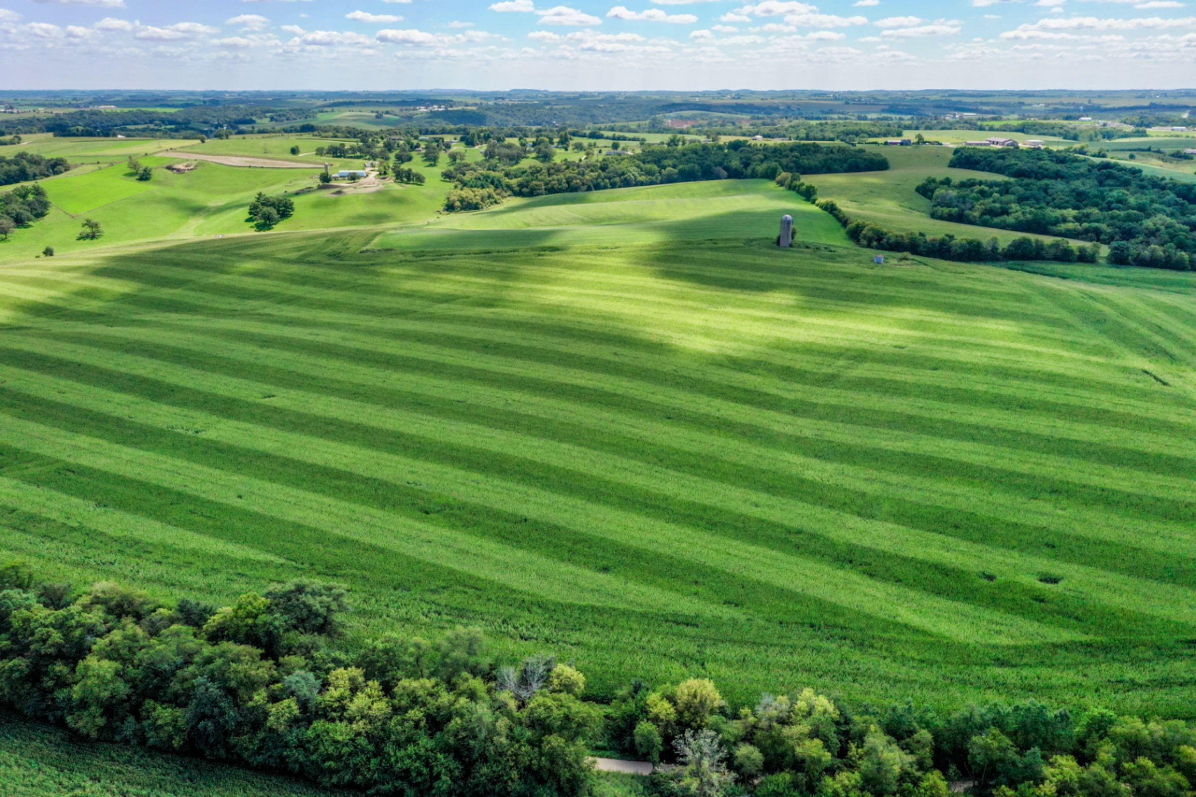 land-lafayette-county-wisconsin-120-acres-listing-number-15729-5-2021-09-03-204841.jpg