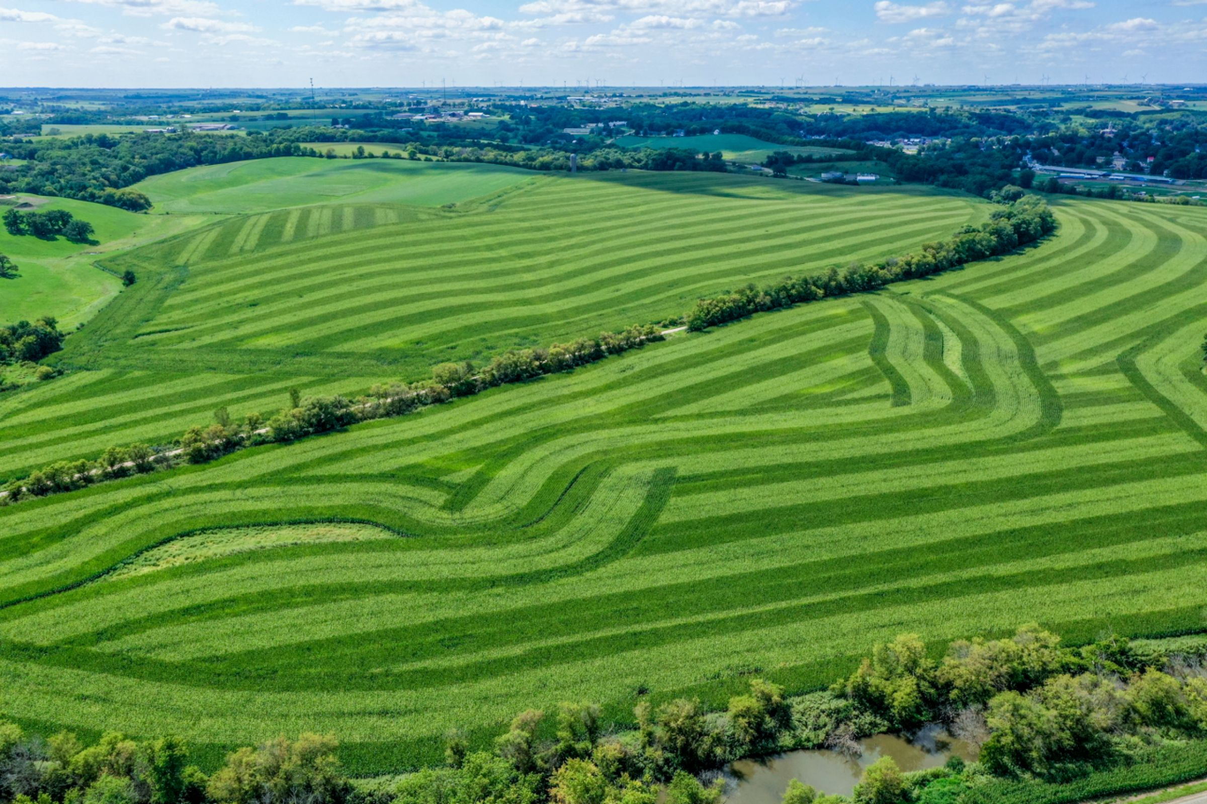 land-lafayette-county-wisconsin-120-acres-listing-number-15729-8-2021-09-03-204843.jpg