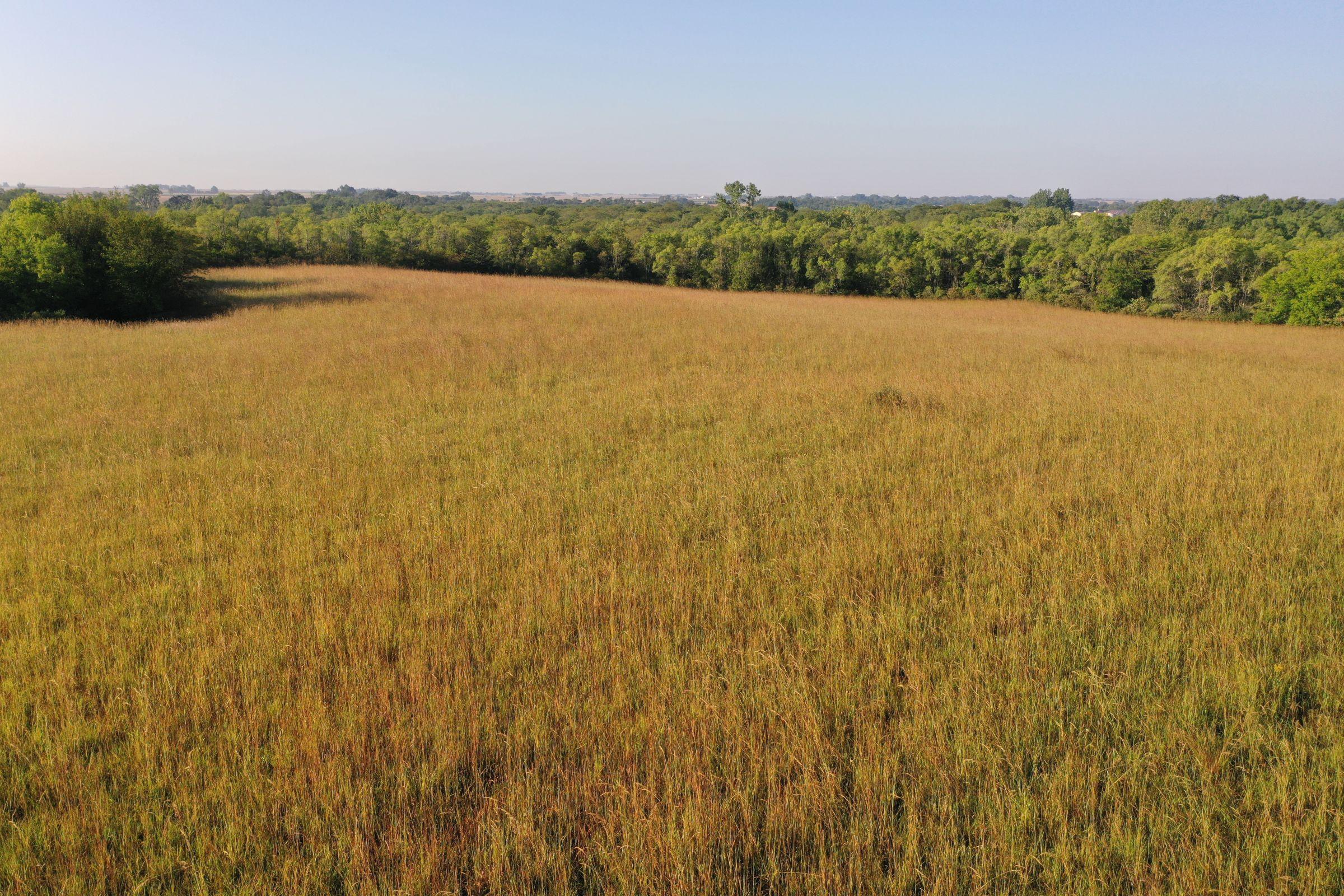 Greene County Iowa Farmland For Sale