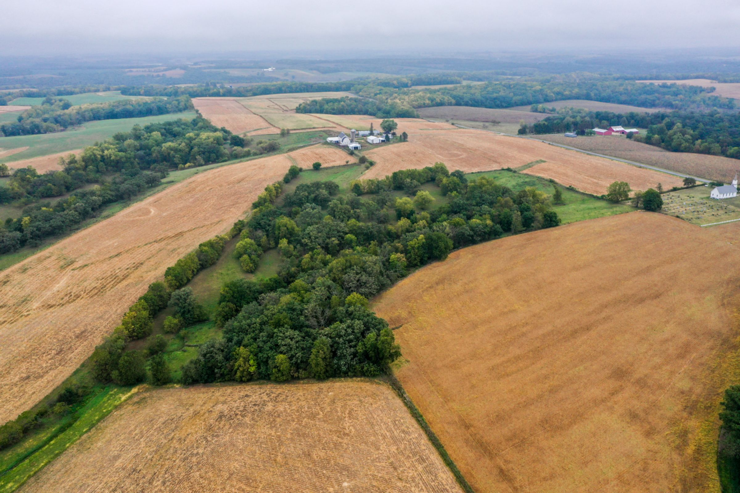 auctions-land-lafayette-county-wisconsin-138-acres-listing-number-15758-0-2021-09-21-155930.jpg