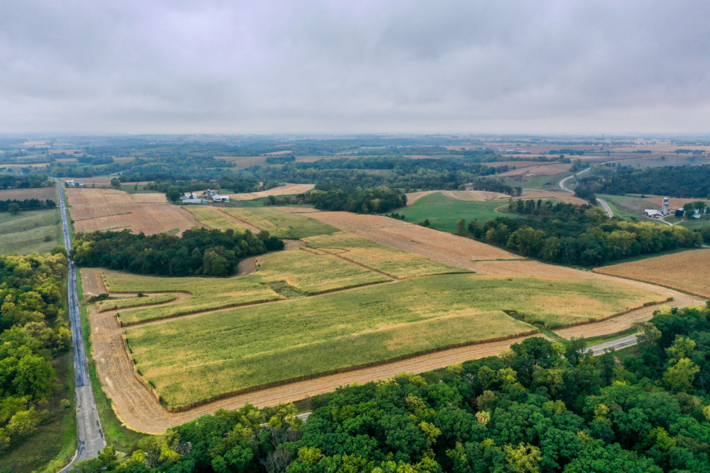 auctions-land-lafayette-county-wisconsin-138-acres-listing-number-15758-3-2021-09-21-155931.jpg