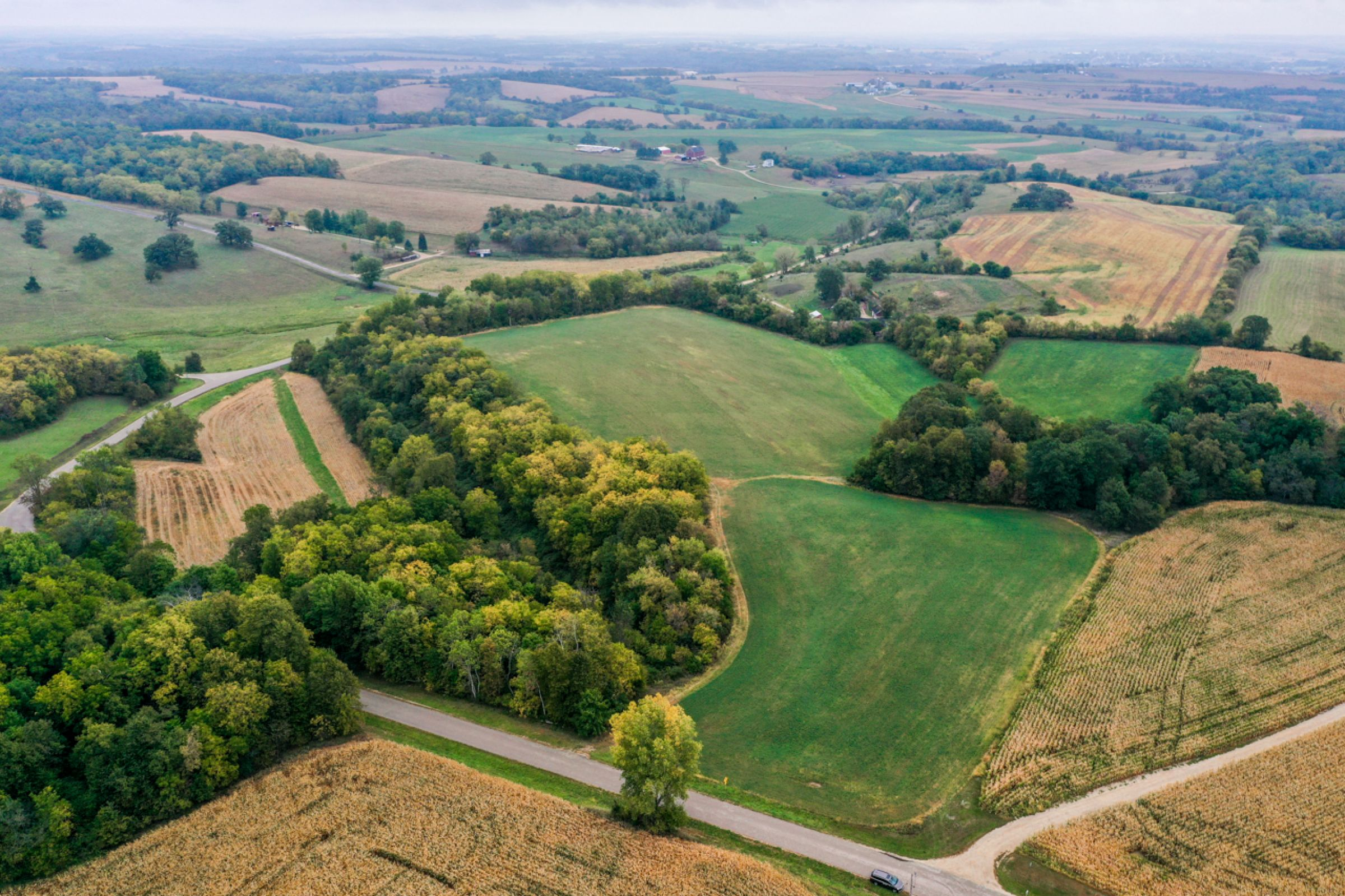 auctions-land-lafayette-county-wisconsin-138-acres-listing-number-15758-4-2021-09-21-155932.jpg
