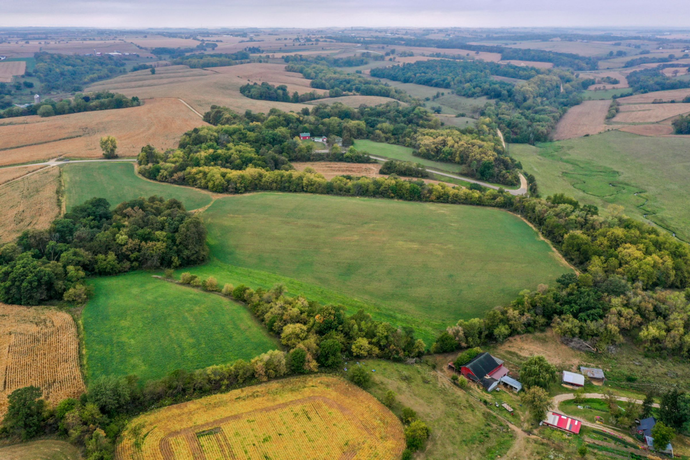 auctions-land-lafayette-county-wisconsin-138-acres-listing-number-15758-5-2021-09-21-155932.jpg