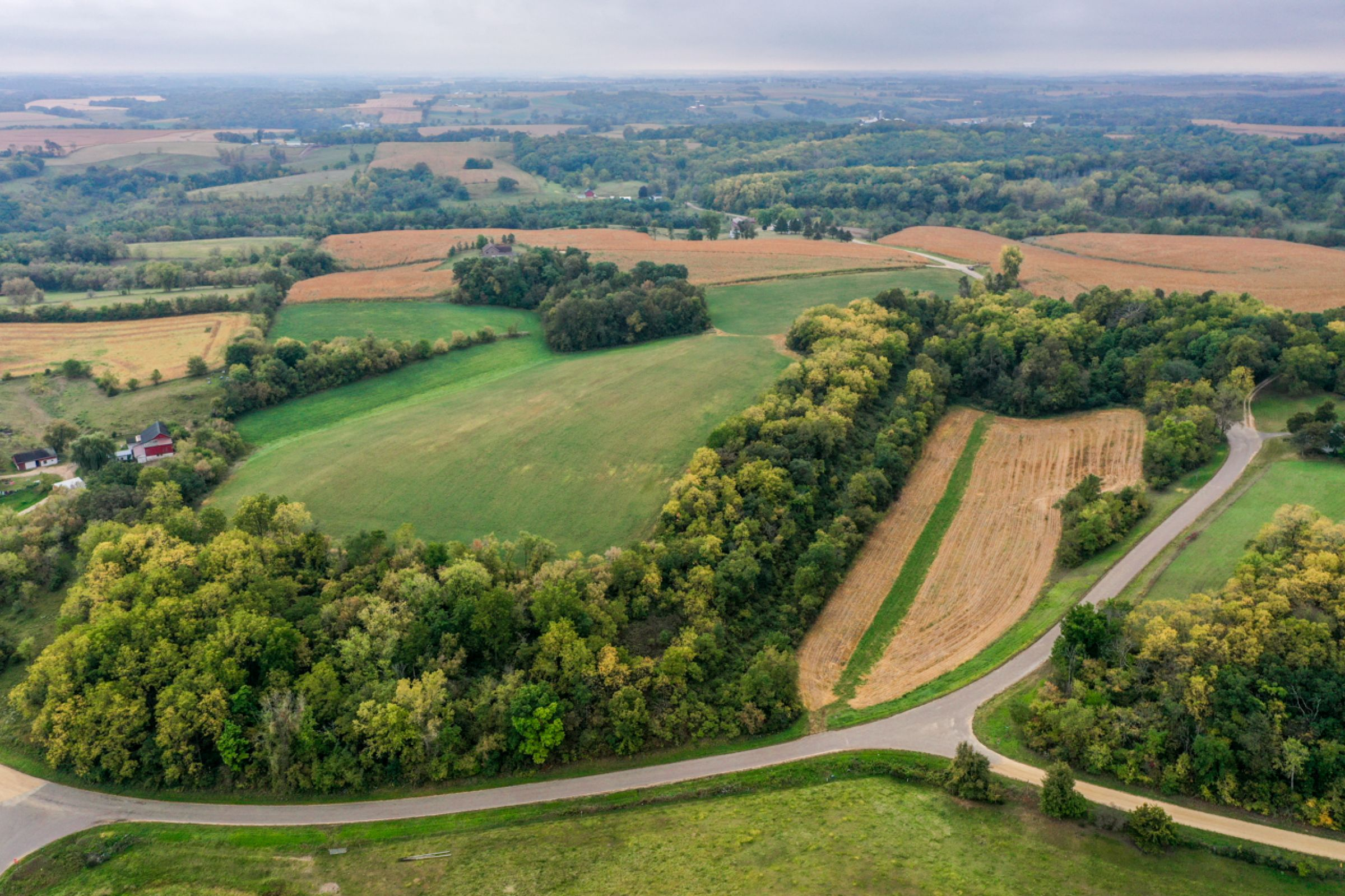auctions-land-lafayette-county-wisconsin-138-acres-listing-number-15758-6-2021-09-21-155933.jpg