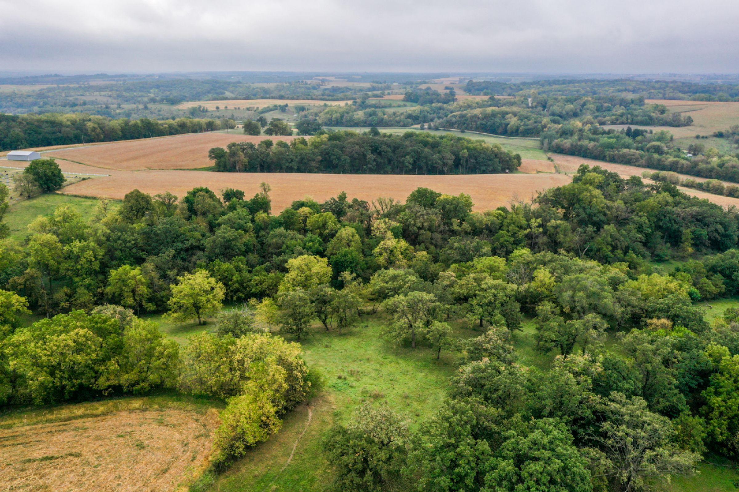 2-apple-grove-church-road-argyle-53504-6-2021-09-21-153559.jpg