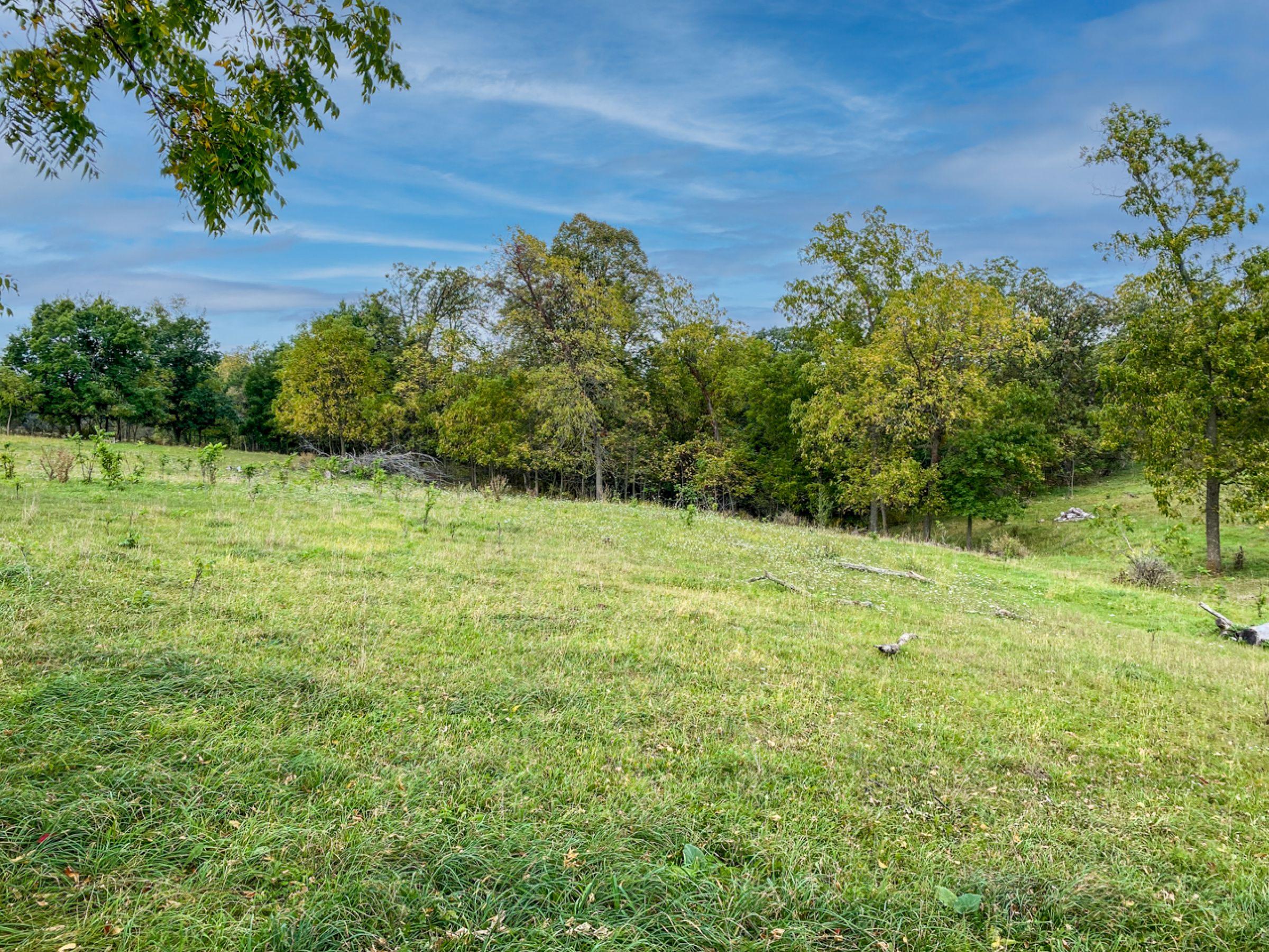 2-apple-grove-church-road-argyle-53504-7-2021-09-21-153559.jpg