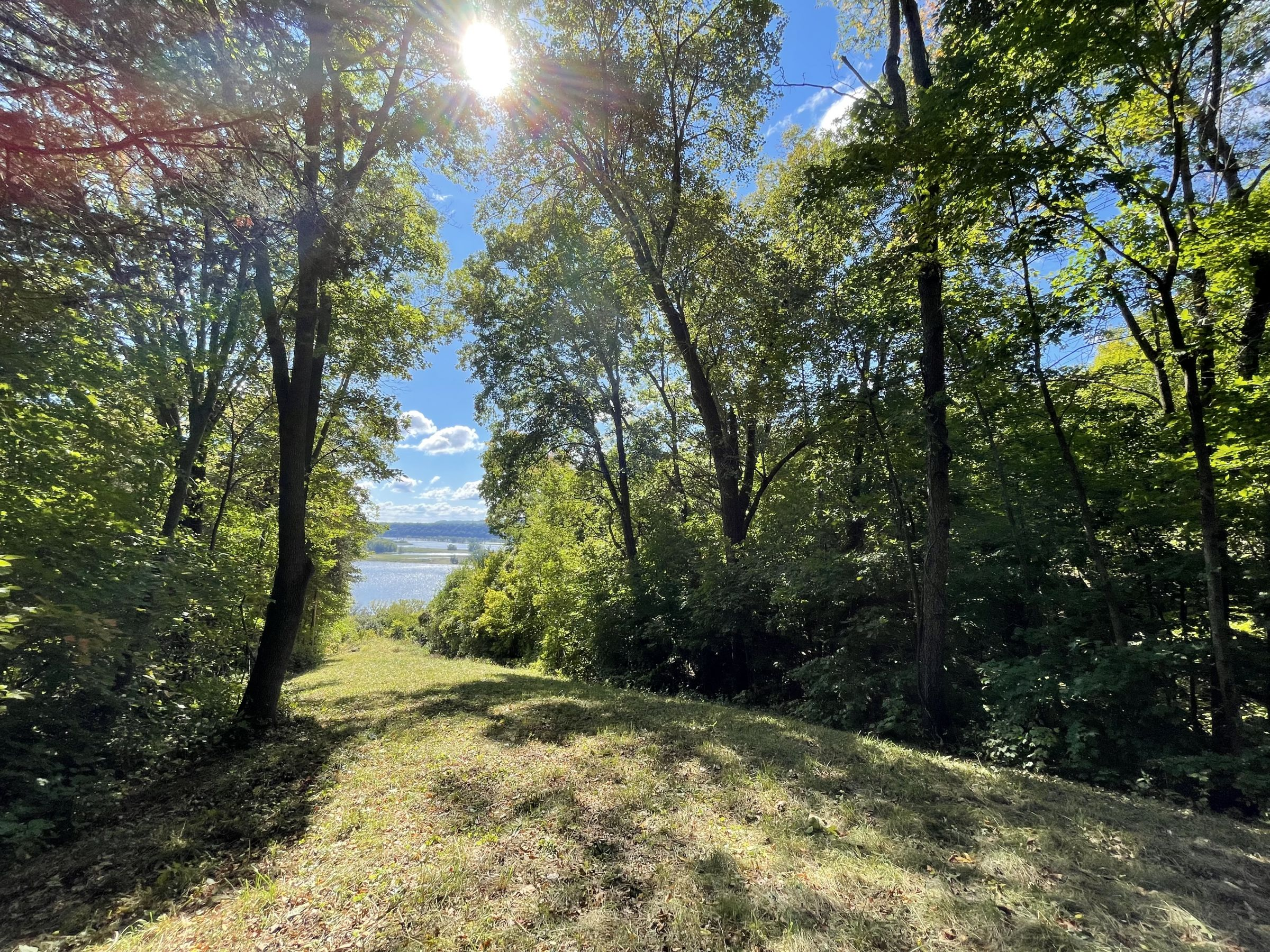 land-grant-county-wisconsin-4-acres-listing-number-15772-0-2021-09-23-020449.JPG