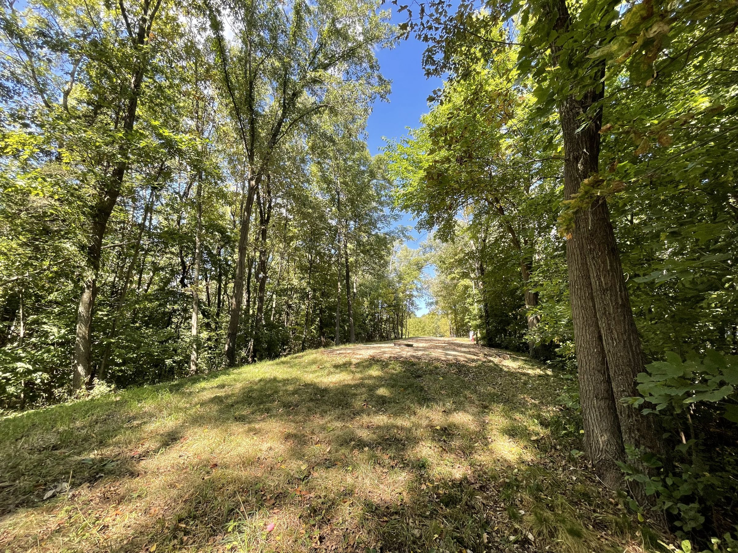 land-grant-county-wisconsin-4-acres-listing-number-15772-4-2021-09-23-020215.JPG