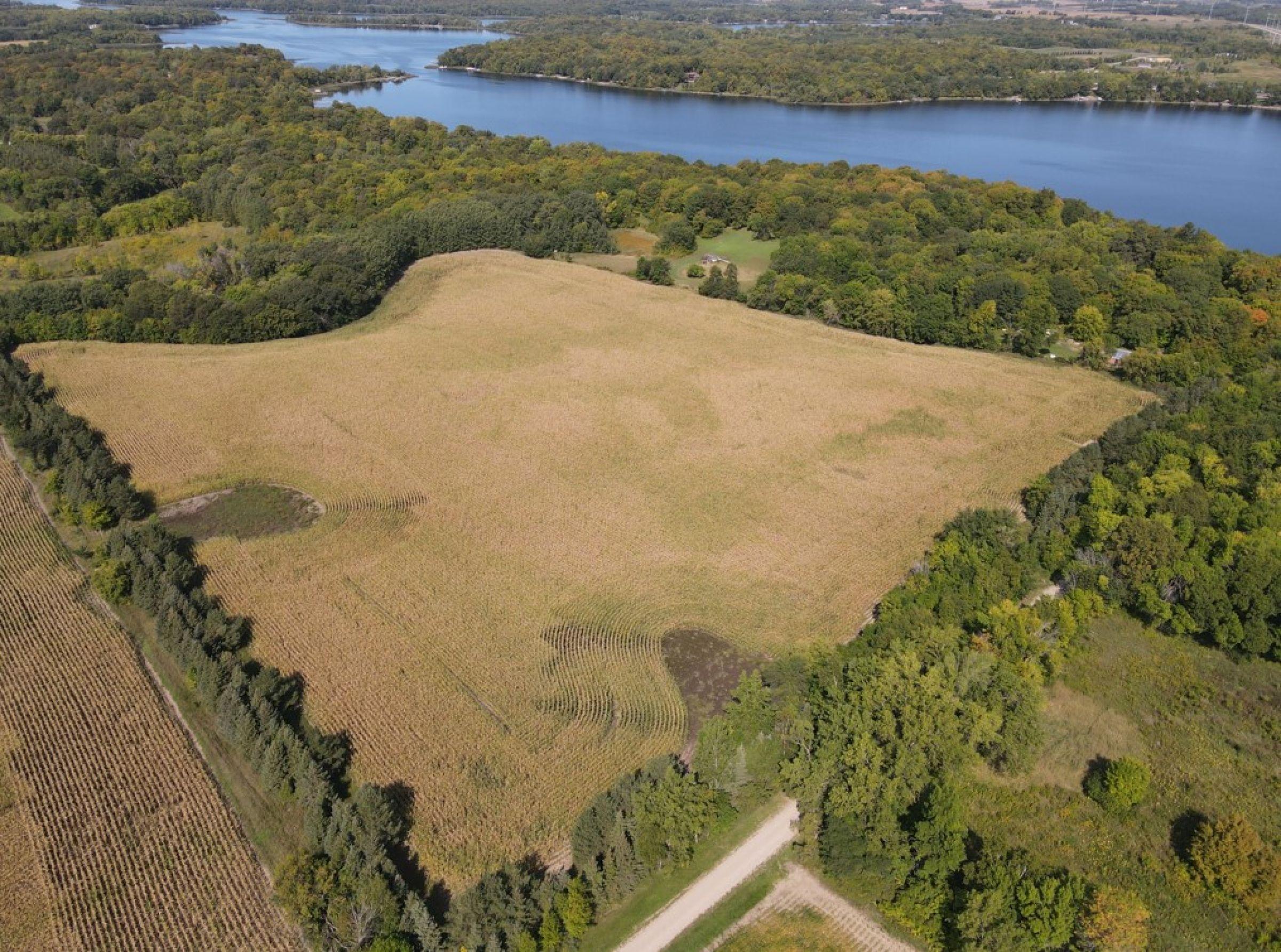 auctions-douglas-county-minnesota-40-acres-listing-number-15777-0-2021-09-24-193531.jpg