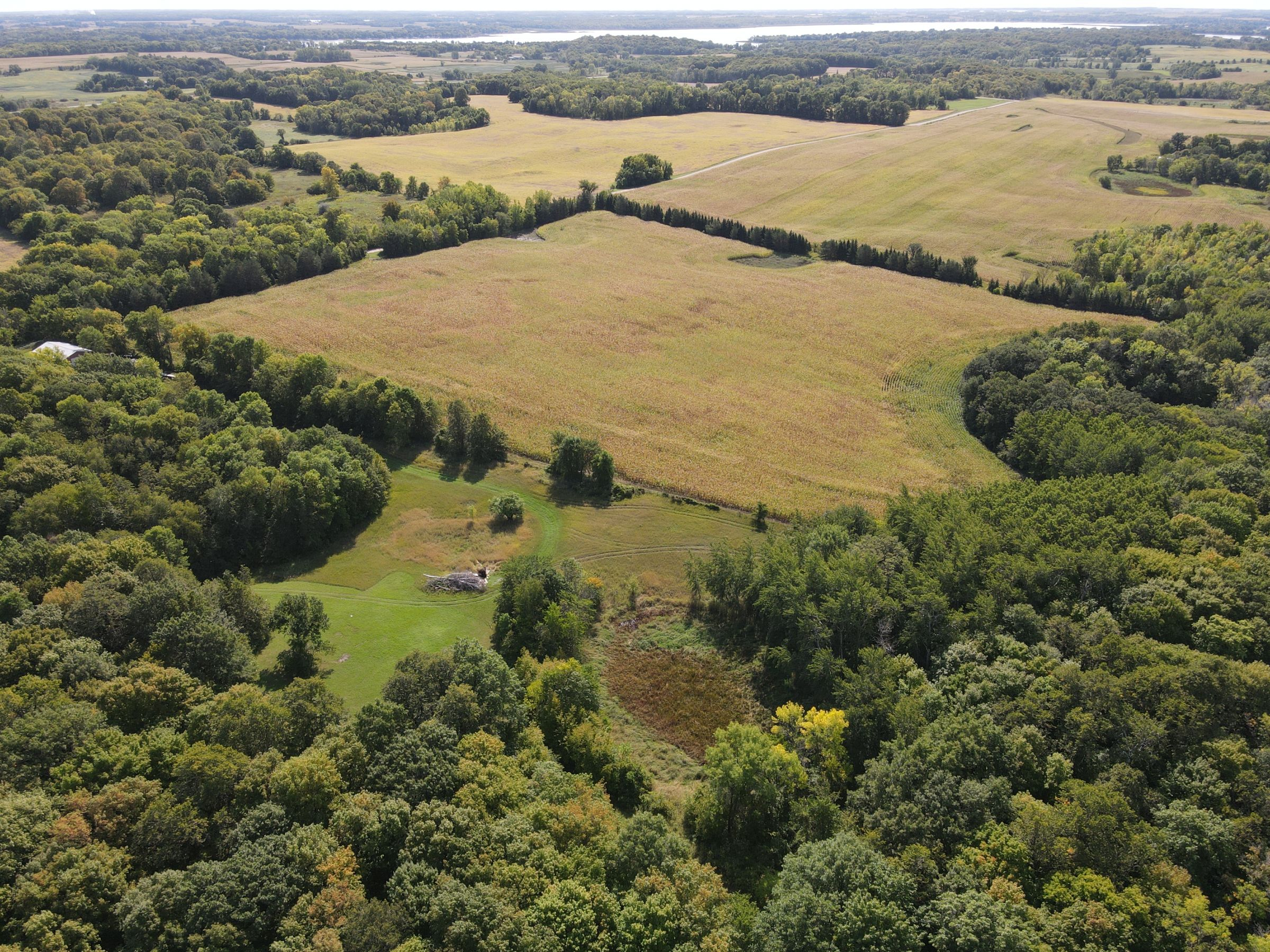 residential-auctions-development-land-commercial-douglas-county-minnesota-40-acres-listing-number-15777-0-2021-09-28-162325.JPG