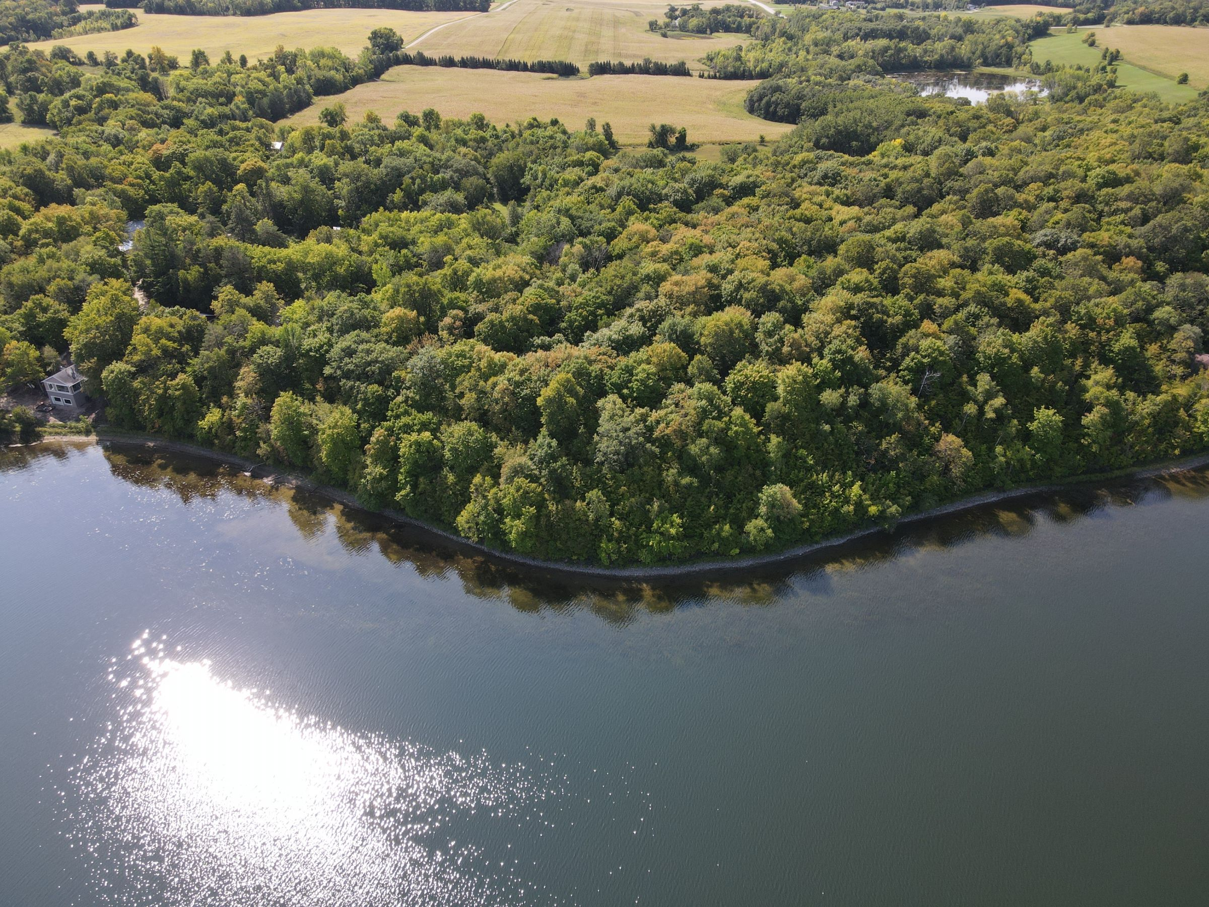 residential-auctions-development-land-commercial-douglas-county-minnesota-40-acres-listing-number-15777-1-2021-09-28-162432.JPG