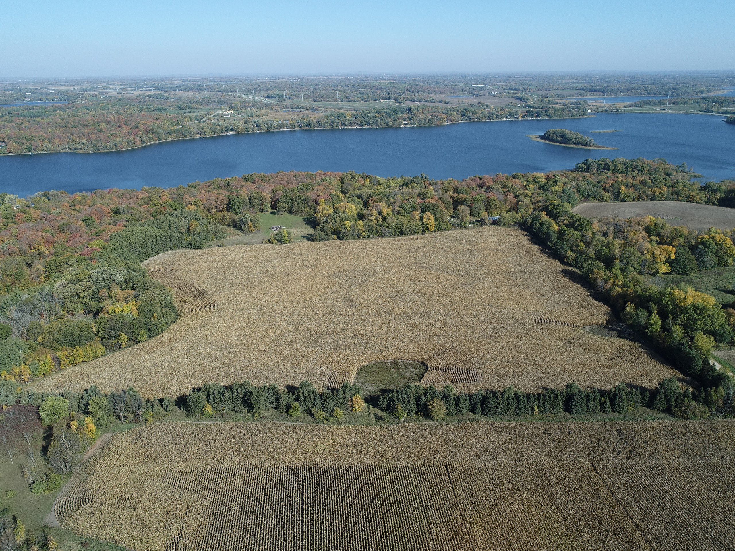 residential-auctions-land-douglas-county-minnesota-40-acres-listing-number-15777-field and lakeshore-0.jpg
