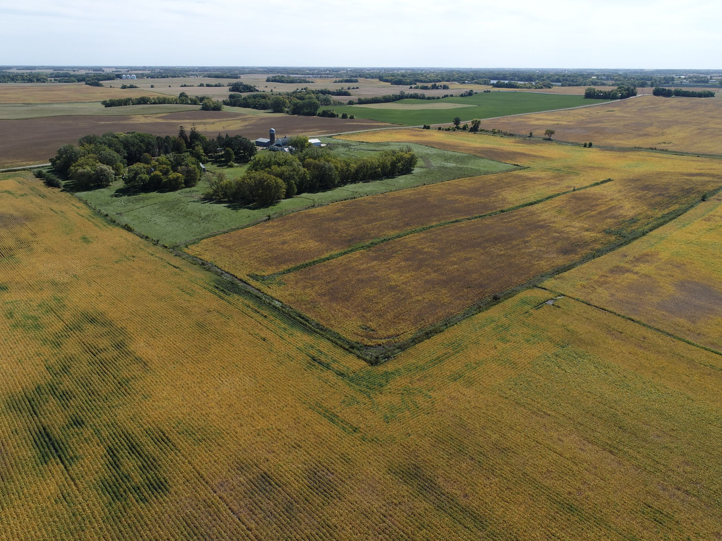 residential-wright-county-minnesota-0-acres-listing-number-15779-3-2021-09-27-235817.JPG