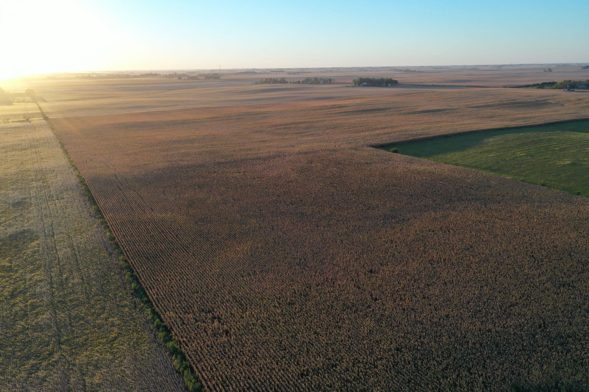 Major Dallas County Iowa Farmland for Sale