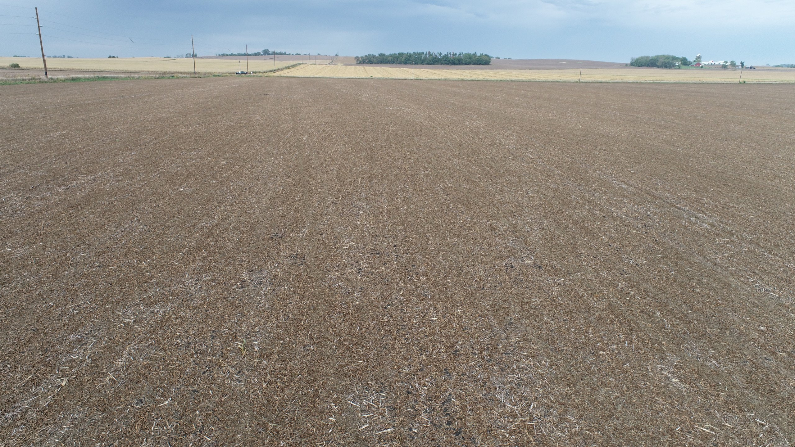 auctions-clinton-county-iowa-80-acres-listing-number-15792-DJI_0086-2.jpg