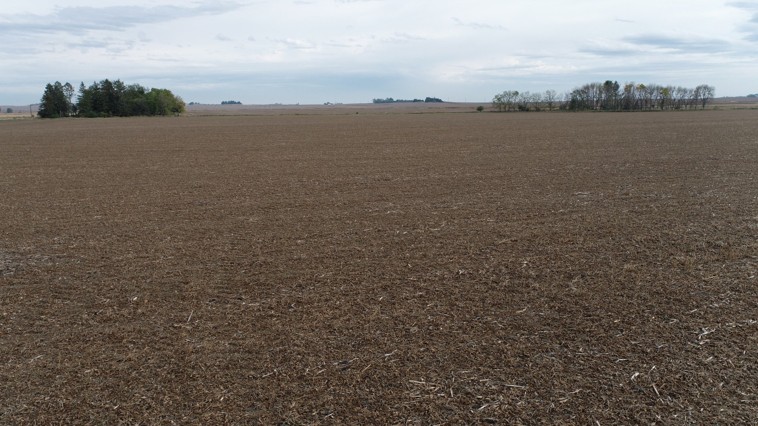 auctions-clinton-county-iowa-80-acres-listing-number-15792-DJI_0091-3.jpg