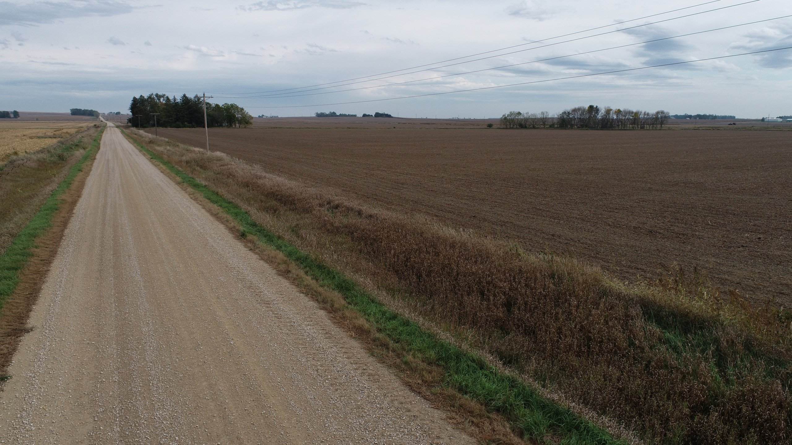 auctions-clinton-county-iowa-80-acres-listing-number-15792-DJI_0092-4.jpg