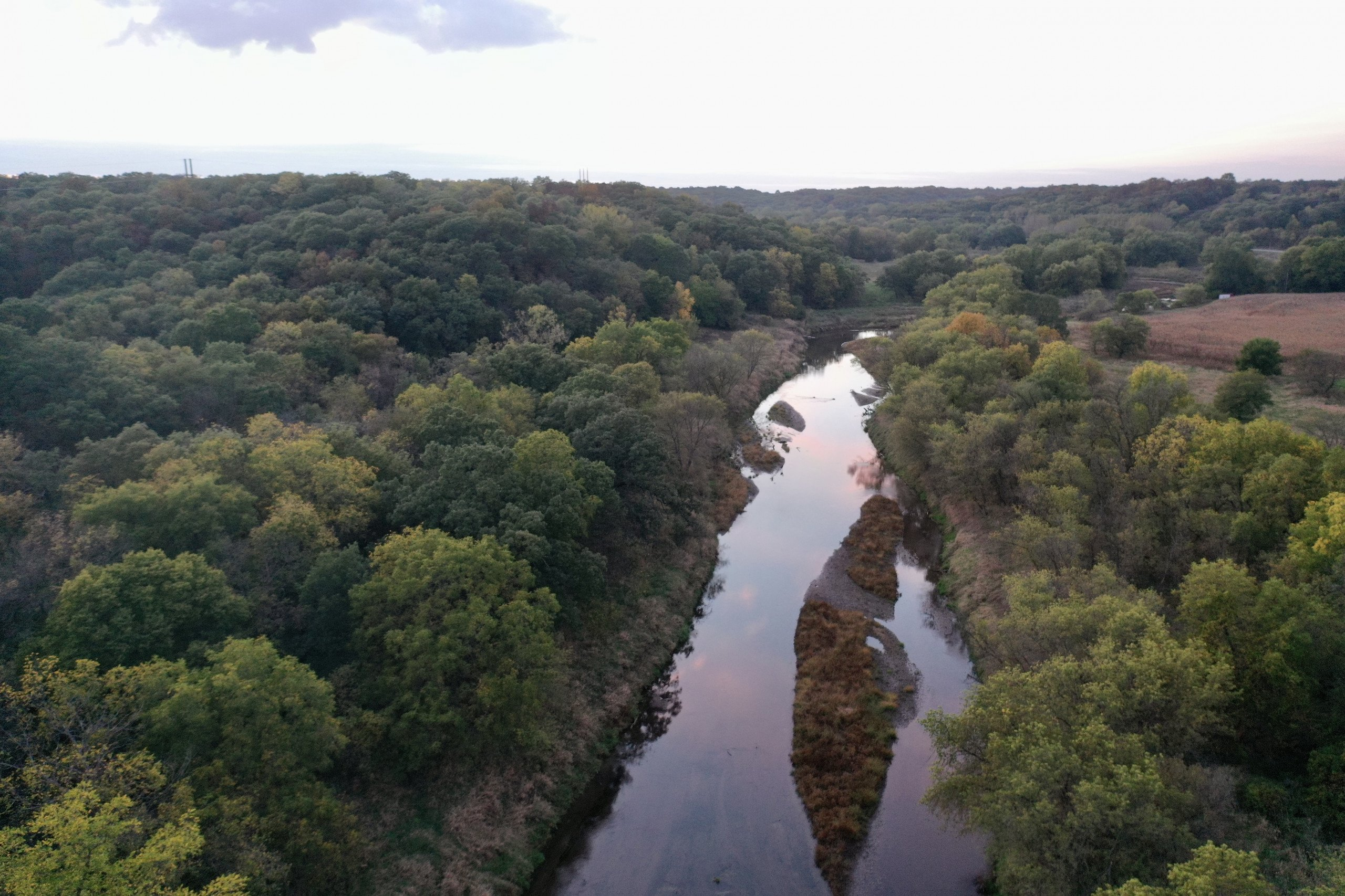 land-guthrie-county-iowa-64-acres-listing-number-15795-IMG_9249-4.jpg