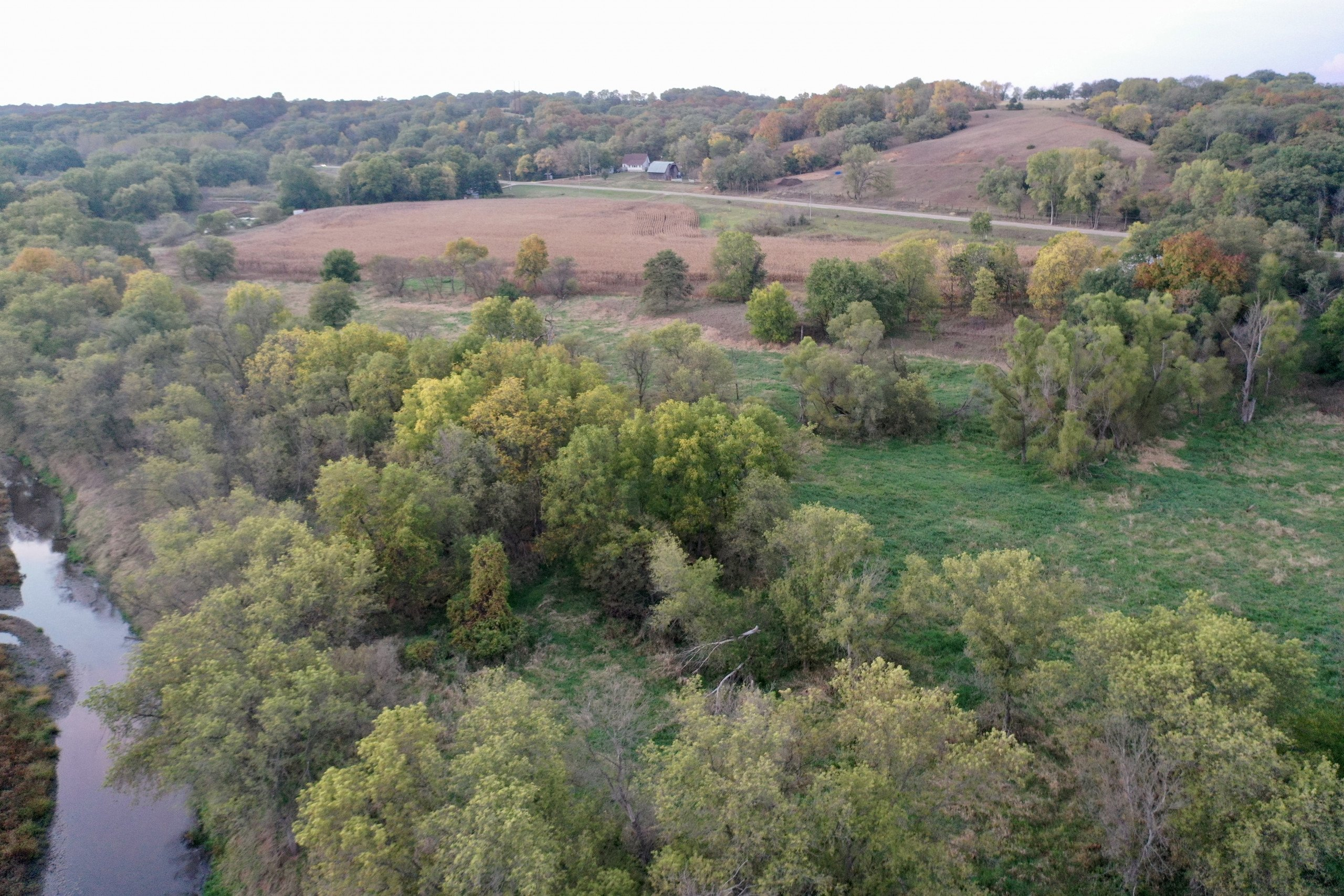 land-guthrie-county-iowa-64-acres-listing-number-15795-IMG_9250-0.jpg
