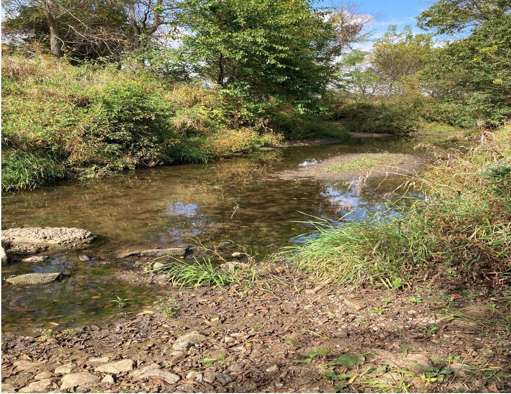 land-warren-county-iowa-200-acres-listing-number-15810-Creek-1.jpg