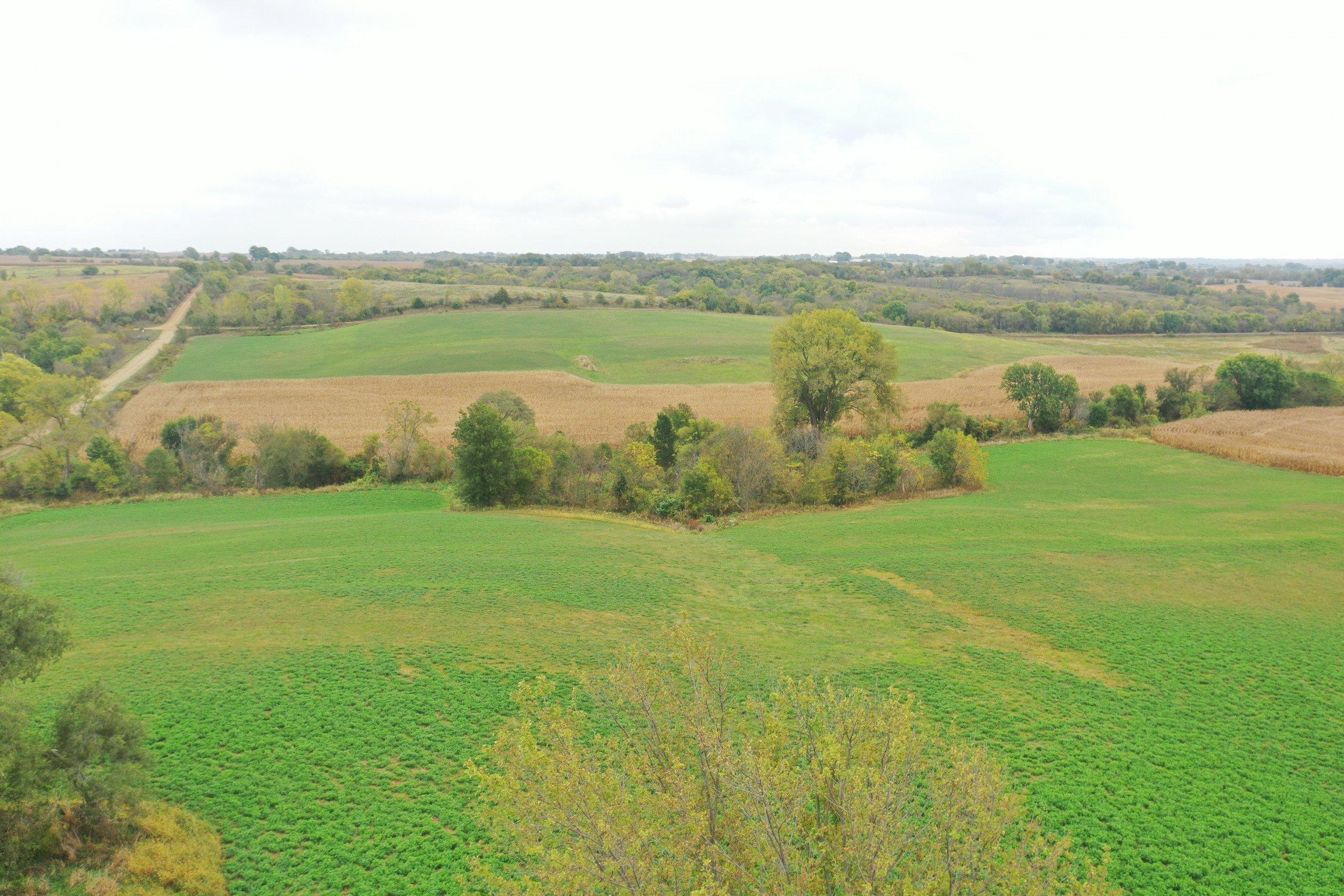 land-warren-county-iowa-200-acres-listing-number-15810-DJI_0559-0.jpg