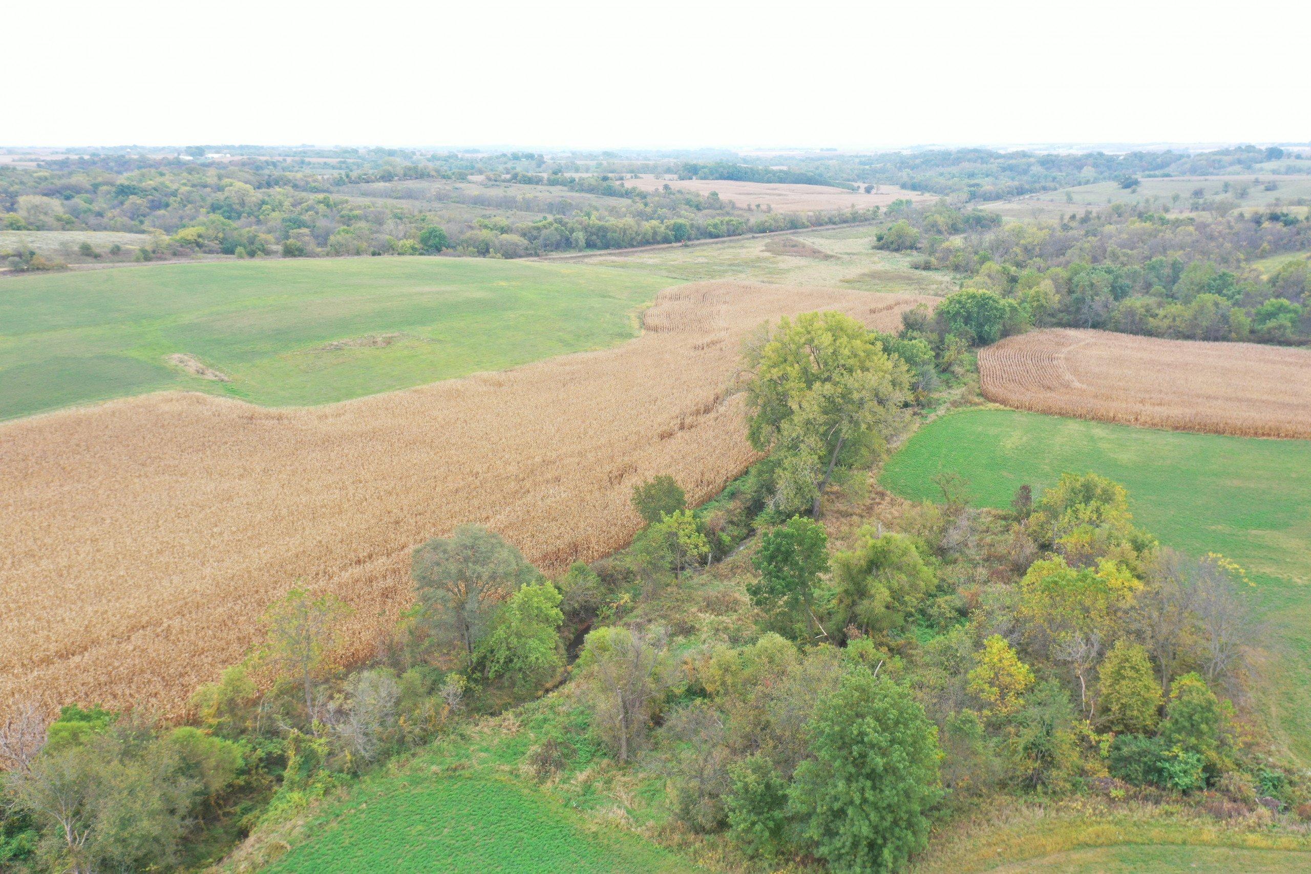 land-warren-county-iowa-200-acres-listing-number-15810-DJI_0561-1.jpg