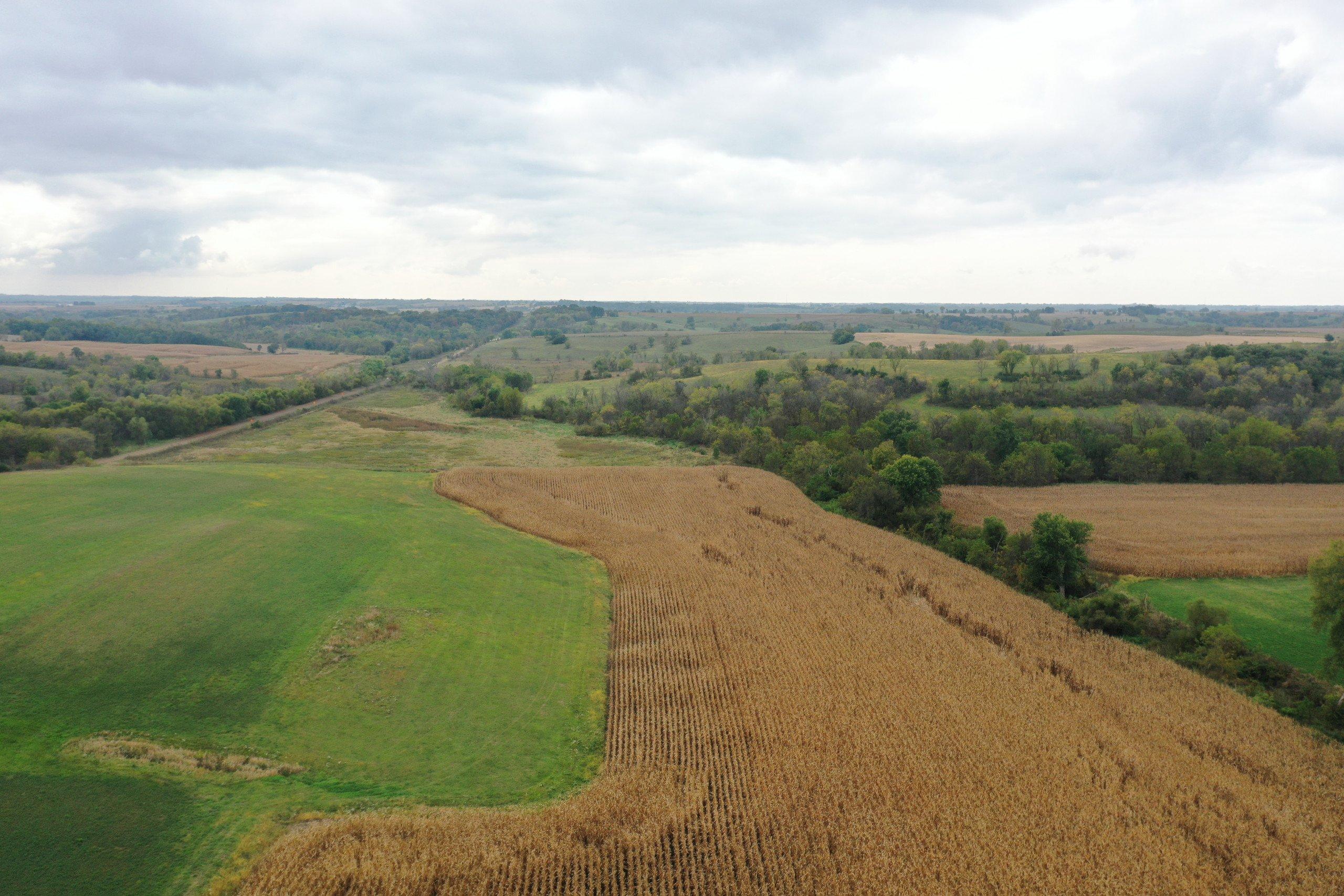 land-warren-county-iowa-200-acres-listing-number-15810-DJI_0578-1.jpg