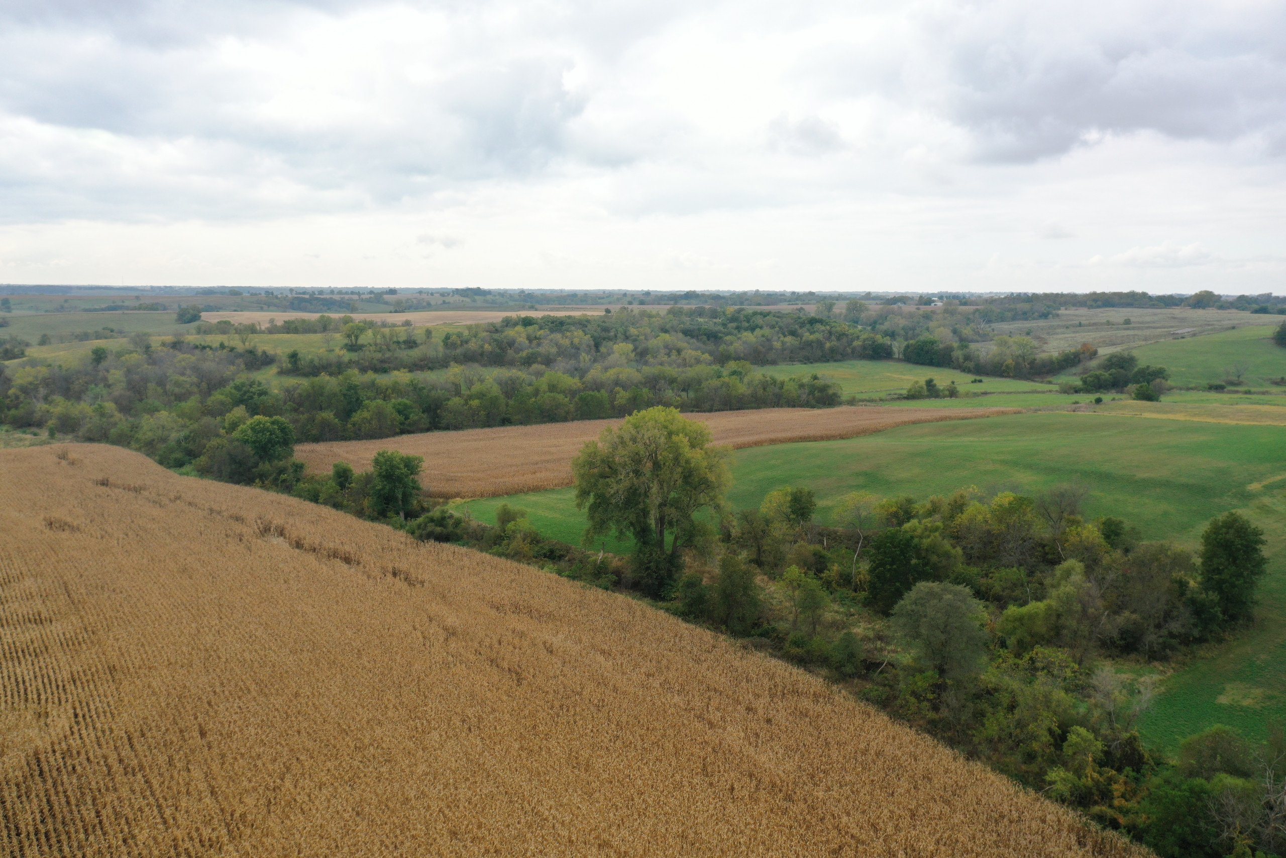 land-warren-county-iowa-200-acres-listing-number-15810-DJI_0579-2.jpg