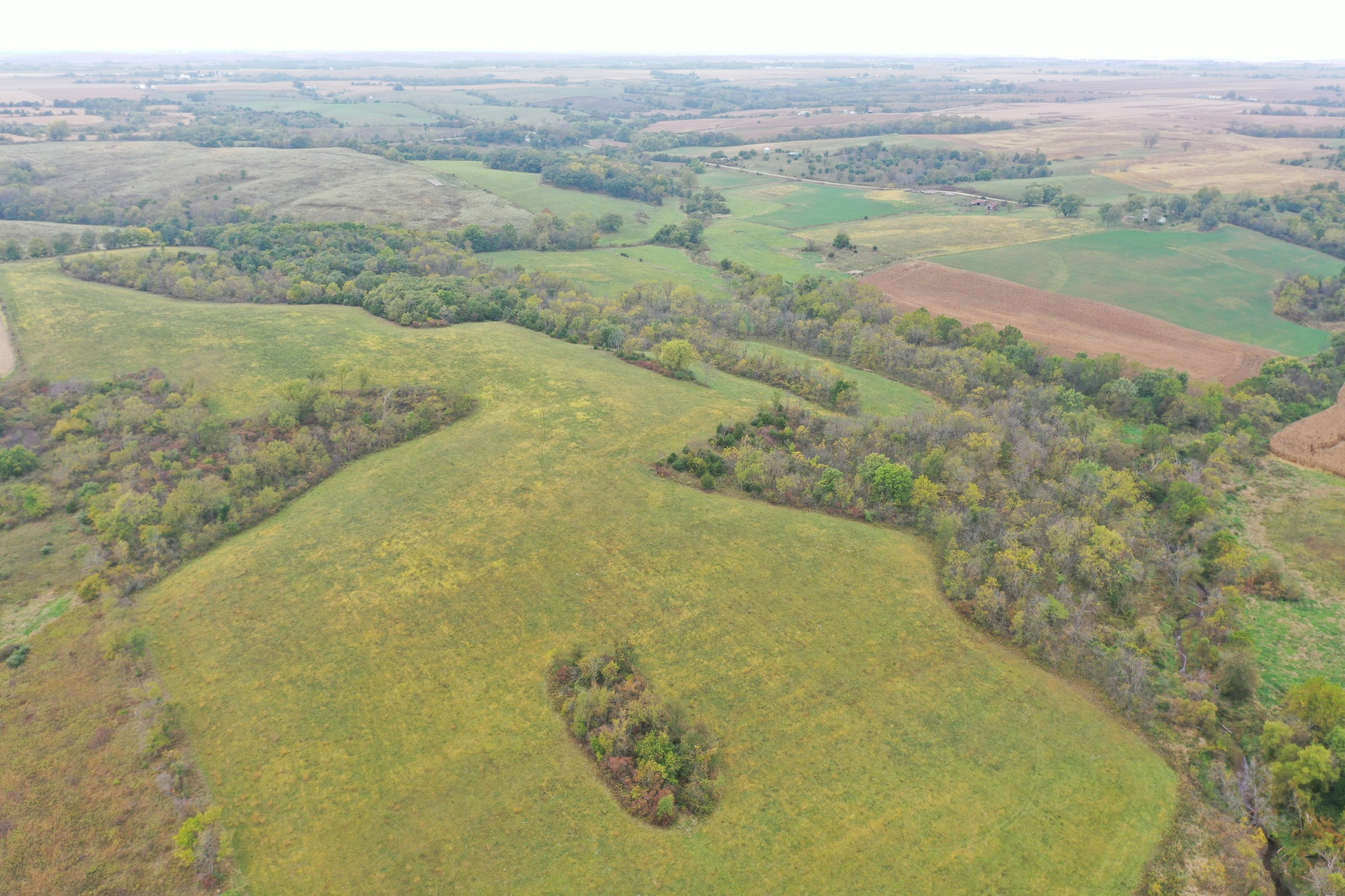 land-warren-county-iowa-200-acres-listing-number-15810-DJI_0589-0.jpg