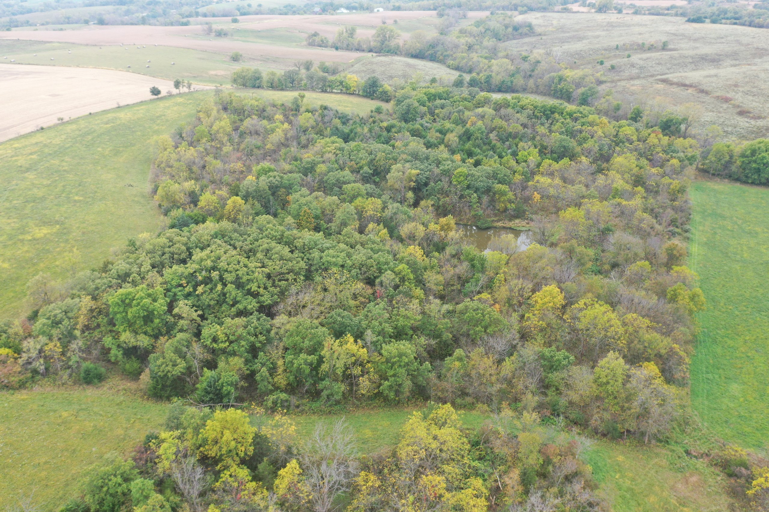 land-warren-county-iowa-200-acres-listing-number-15810-DJI_0597-2.jpg