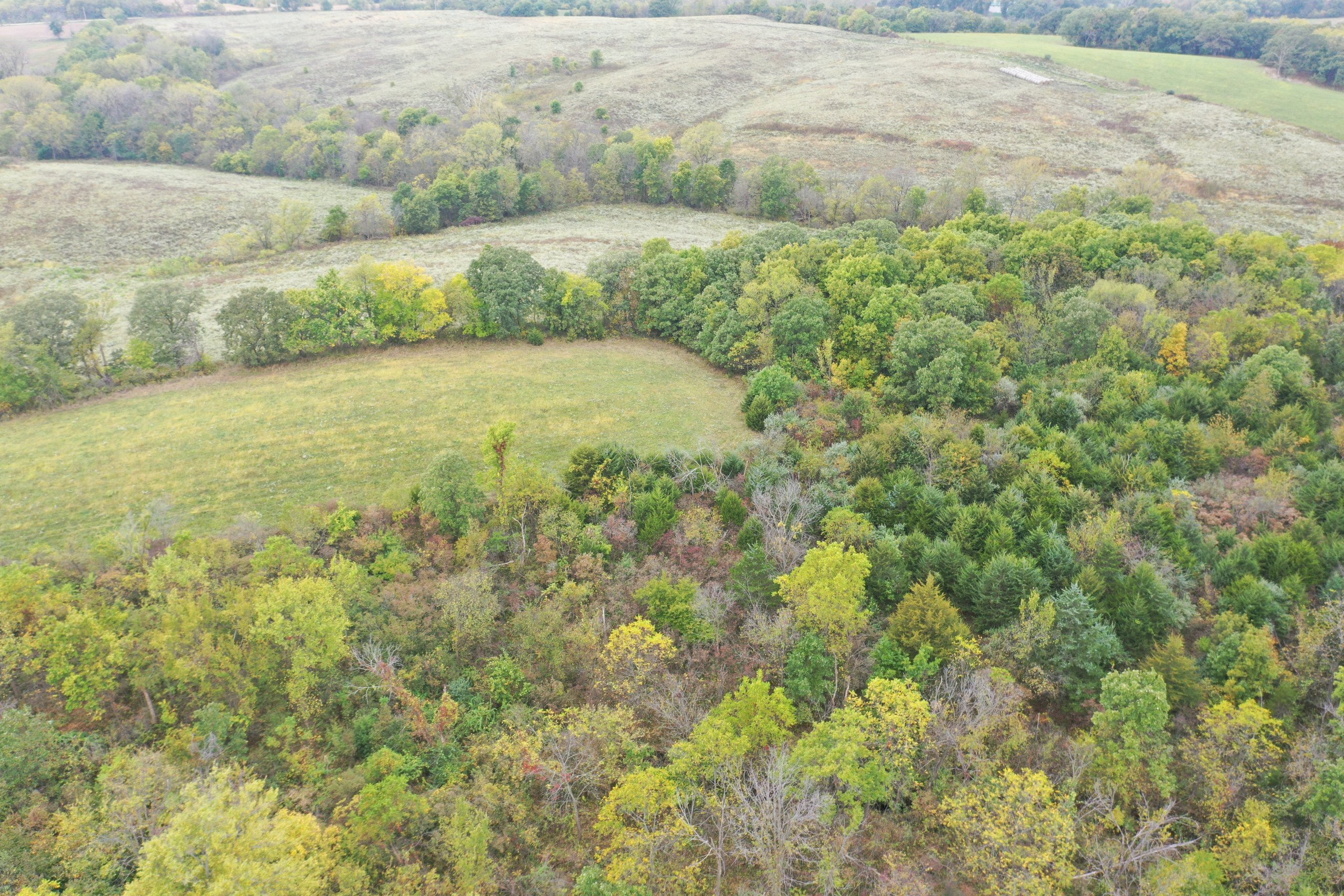 land-warren-county-iowa-200-acres-listing-number-15810-DJI_0602-0.jpg