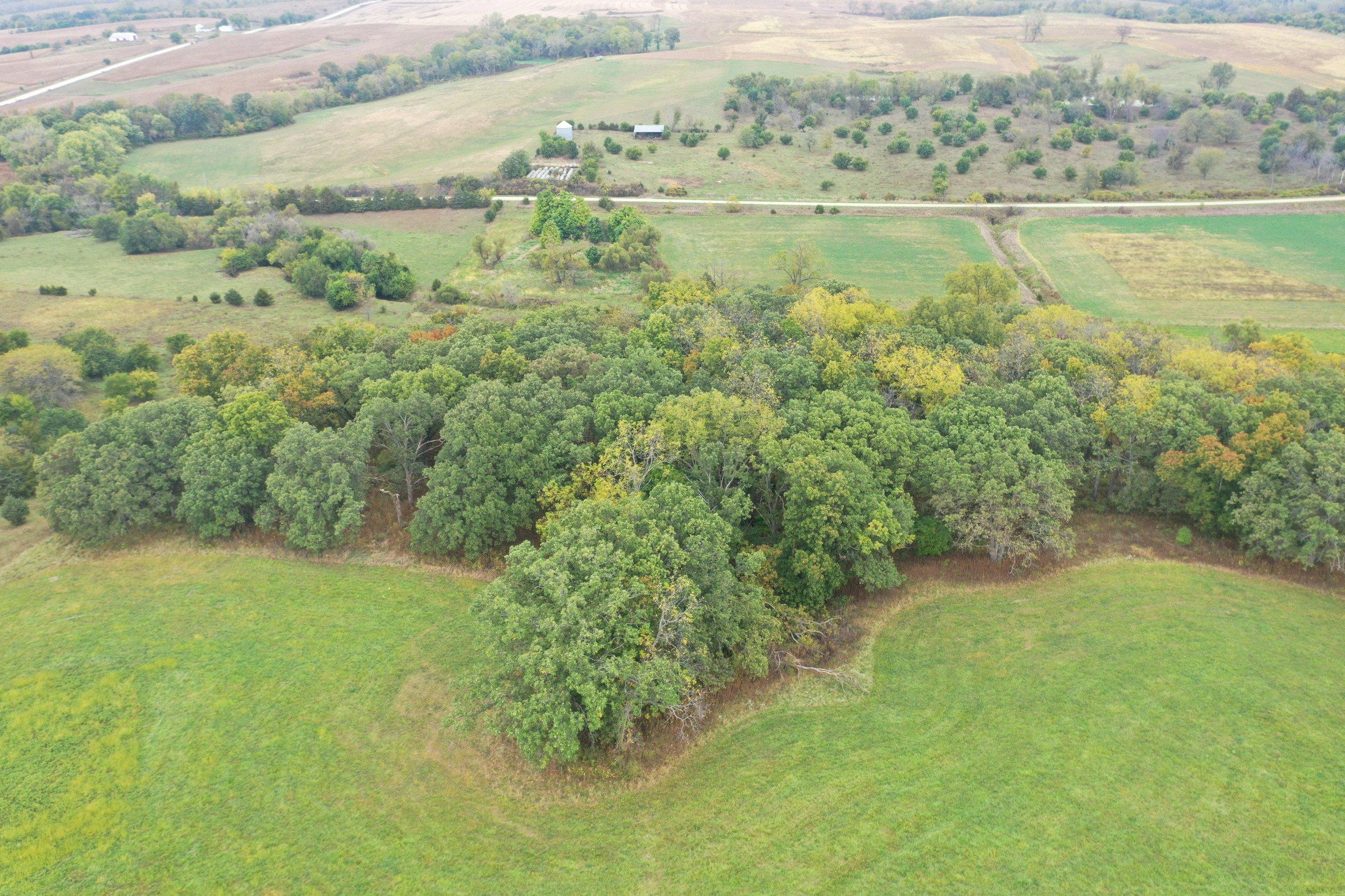 land-warren-county-iowa-200-acres-listing-number-15810-DJI_0615-6.jpg