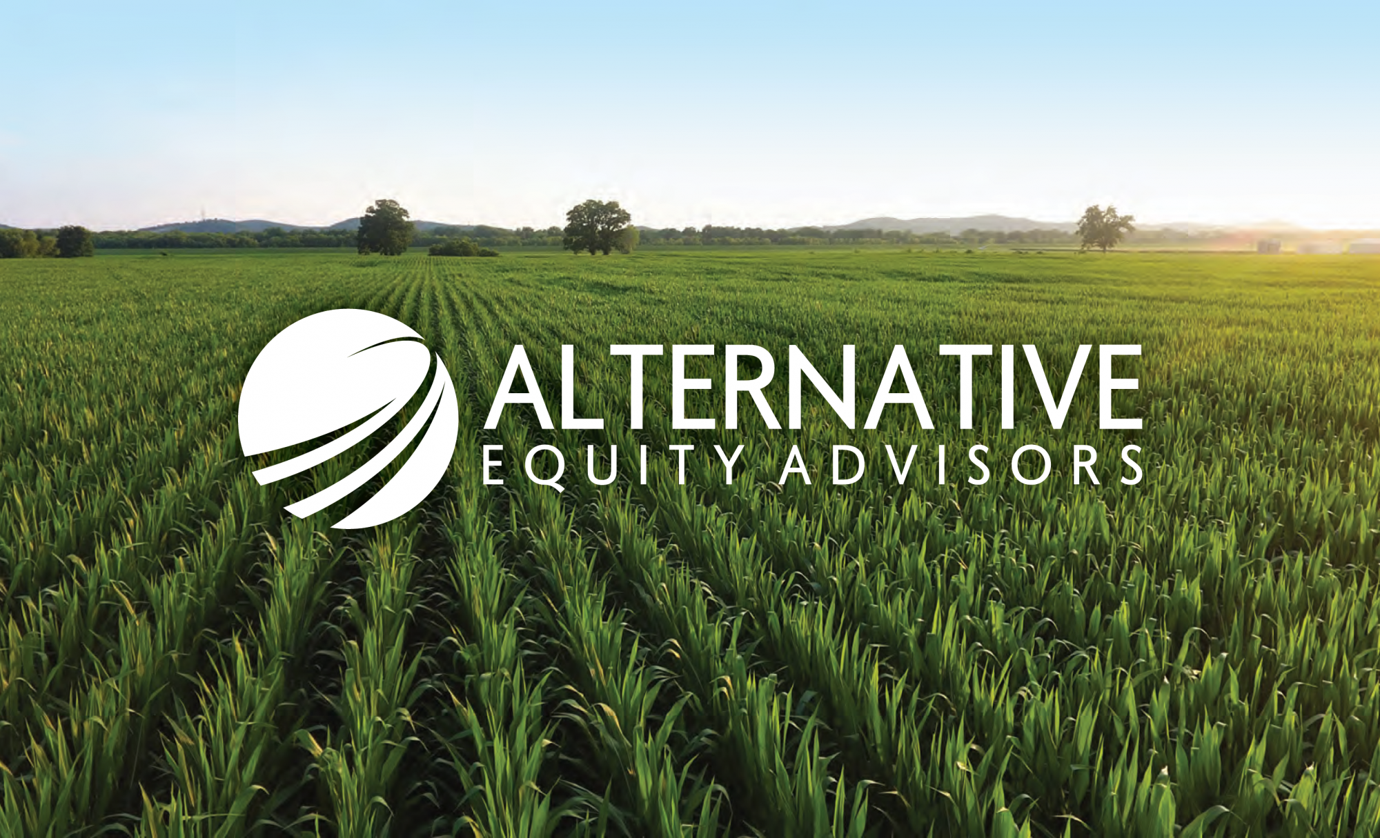 Alternative Equity Advisors